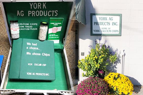York Ag Story
