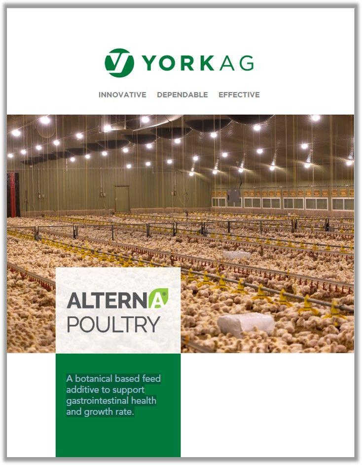 York Ag Alterna Poultry Brochure Cover