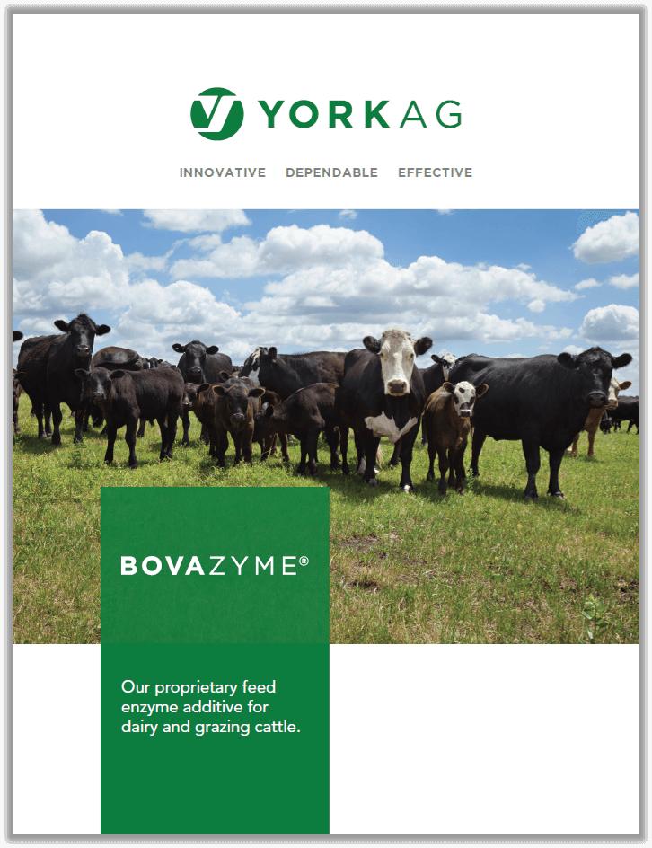 Brochure cover of York Ag BOVAZYME, feed enzymes .