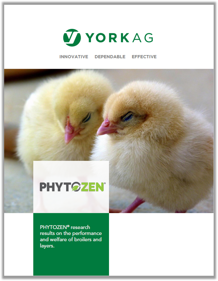 PHYTOZEN Broilers and Layers Research Brochure
