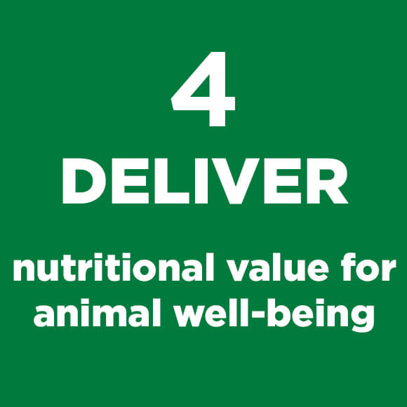 Green Square with Deliver Nutritional Value Text