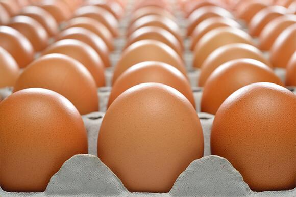 Carton tray of brown eggs