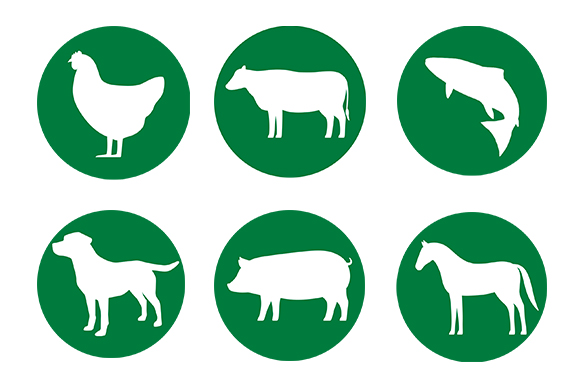 Green Background Badges of Multiple Animal Species